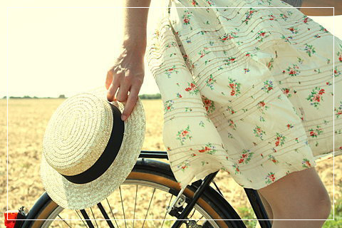 doceelegancia_bicycle1