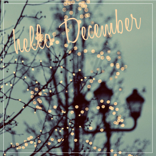doceelegancia_december
