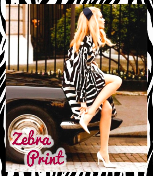 de-zebra1
